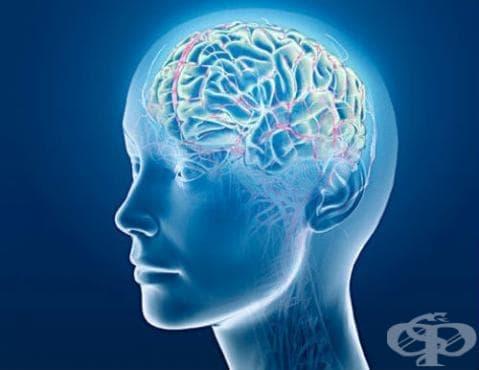 Други увреждания на главния мозък МКБ G93 - изображение