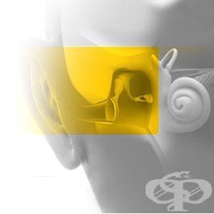 Едностранна звукопроводна загуба на слуха с нормален слух на другото ухо МКБ H90.1 - изображение