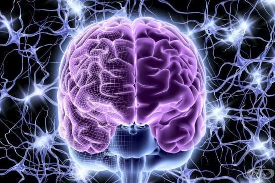 Епилепсия МКБ G40 - изображение