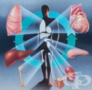 Отмиране и отхвърляне на присадени органи и тъкани МКБ T86 - изображение
