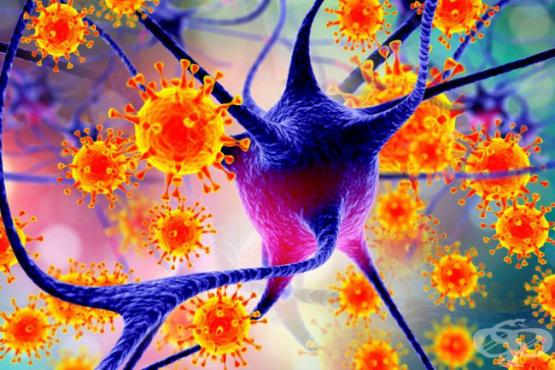 Деменция при болест, предизвикана от вируса на човешкия имунодефицит [HIV] (B22.0ї) МКБ F02.4 - изображение