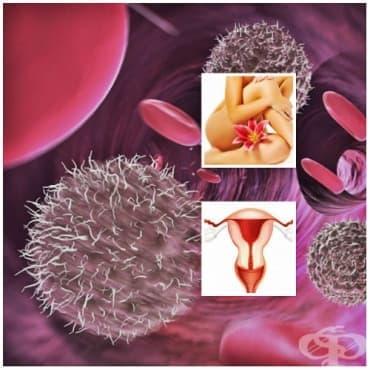 Кандидоза на вулвата и вагината (N77.1*) МКБ B37.3 - изображение