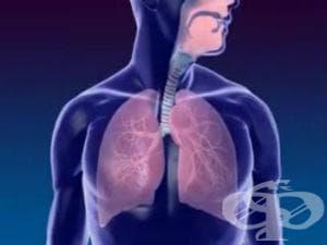 Други и неуточнени препарати, действащи на дихателните органи МКБ Y55.7 - изображение