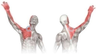 Миорелаксанти [блокери на Н-холинорецепторите на скелетните мускули] МКБ Y55.1 - изображение