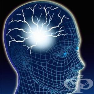 Вродени аномалии на нервната система МКБ Q00-Q07 - изображение
