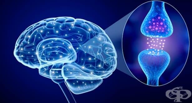 Деменция при болестта на Parkinson (G20+) МКБ F02.3 - изображение