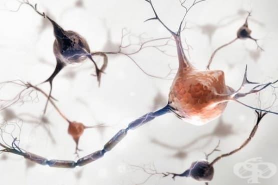 Наследствена и идиопатична невропатия МКБ G60 - изображение