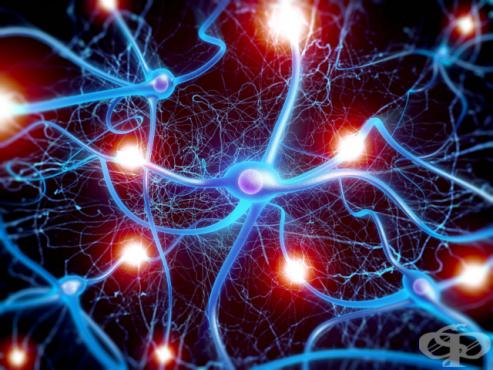 Полиневропатии и други увреждания на периферната нервна система МКБ G60-G64 - изображение