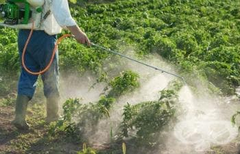 Пестицид, неуточнен МКБ T60.9 - изображение