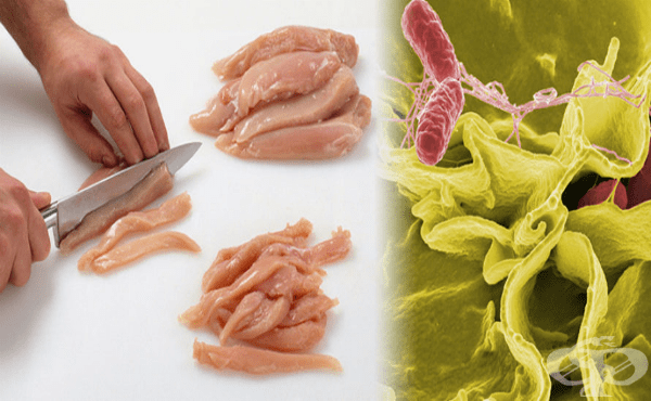 Друга уточнена салмонелозна инфекция МКБ A02.8 - изображение