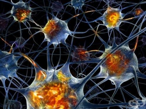 Други увреждания на периферната нервна система МКБ G64 - изображение