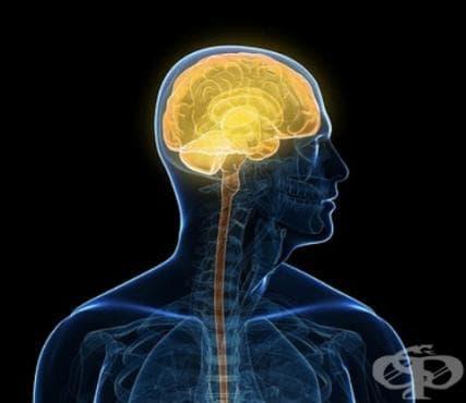 Последици от възпалителни болести на централната нервна система МКБ G09 - изображение