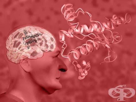 Атипични вирусни инфекции  на централната нервна система МКБ A81 - изображение