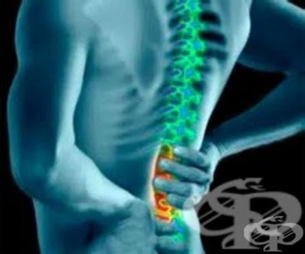 Притискане на нервни коренчета и плексуси при болести на междупрешленните дискове (М50-М51ї) МКБ G55.1 - изображение
