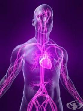 Разстройства на вегететивната [автономната] нервна система МКБ G90 - изображение