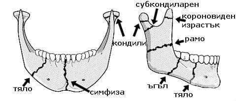 Счупване на долна челюст МКБ S02.6 - изображение