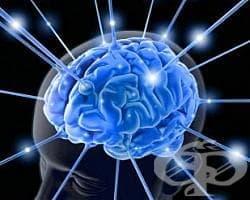Тежка умствена изостаналост МКБ F72 - изображение
