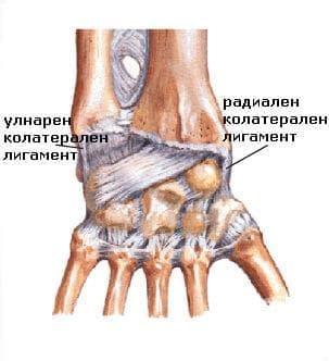 Травматично скъсване на връзките на китката и дланта МКБ S63.3 - изображение