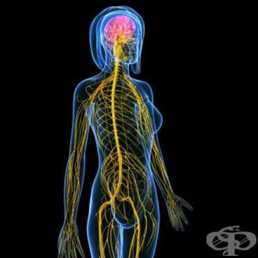 Увреждане на централната нервна система, неуточнено МКБ G96.9 - изображение