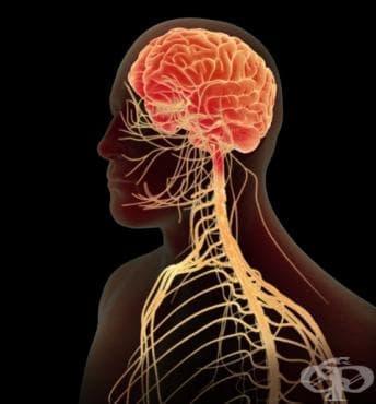 Увреждания на нервната система след медицински процедури,  некласифицирани другаде МКБ G97 - изображение