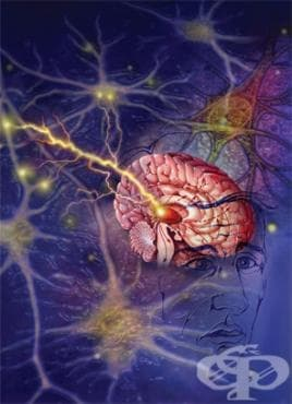 Вирусна инфекция на централната нервна система, неуточнена МКБ A89 - изображение