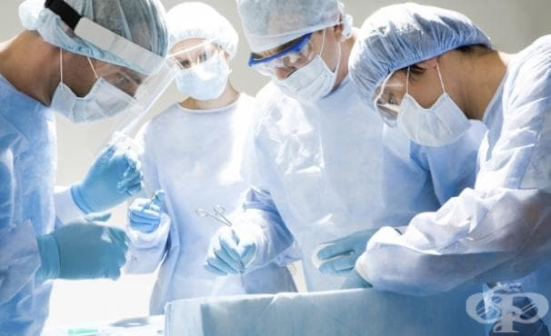 От началото на 2015 г. в България са извършени 35 трансплантации - изображение