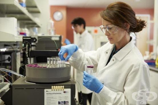Учени: Скоро деменцията ще бъде лечимо заболяване - изображение