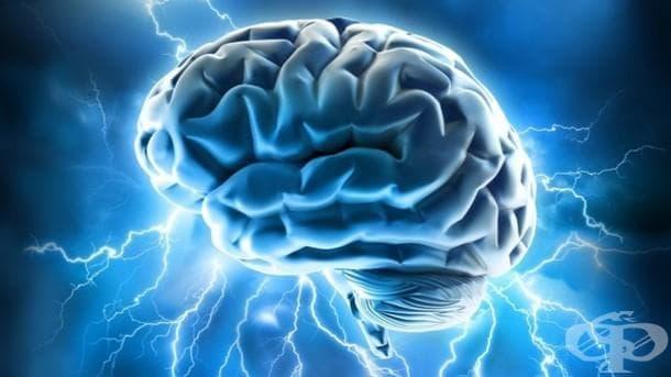Заразен ли е Алцхаймер? - изображение