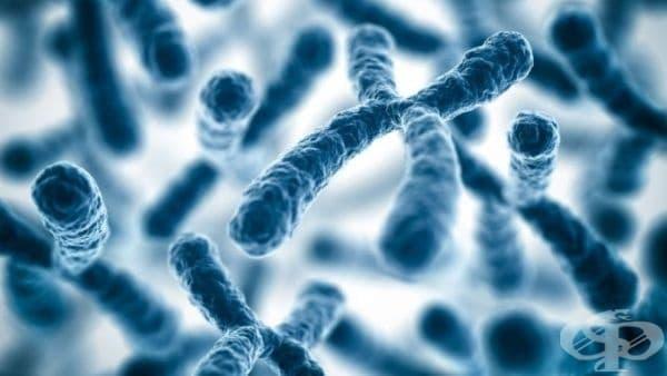 Одобриха първото животоспасяващо лечение чрез генна терапия за деца - изображение