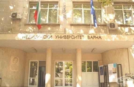 Иновационни технологии за регенерация на роговицата е основната тема на лятното училище по офталмология във Варна - изображение