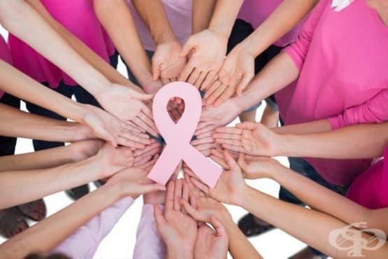 На 19 октомври сградата на Община Стара Загора ще светне в розово в подкрепа на борбата с рака - изображение