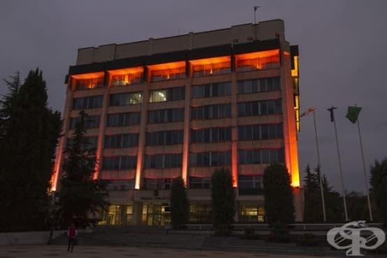 Община Стара Загора светна в розово в знак на съпричастност - изображение