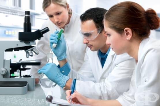Нов ефективен метод за лечение на рака на простатата в начален стадий разработиха хирурзи - изображение