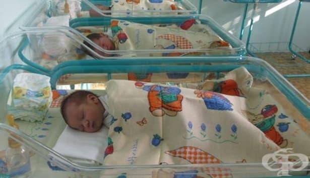 499 бебета са се родили в Дупница през 2016 г. - изображение
