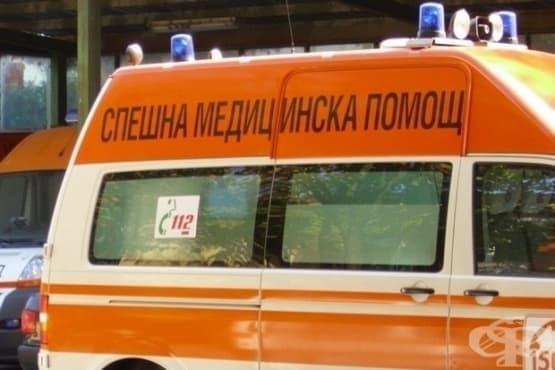 В Пловдив стартира безплатно обучение за оказване на Спешна домедицинска помощ  - изображение