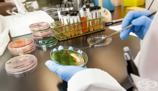Лекарство срещу СПИН, създадено от българин, премина успешно клинични тестове  - изображение