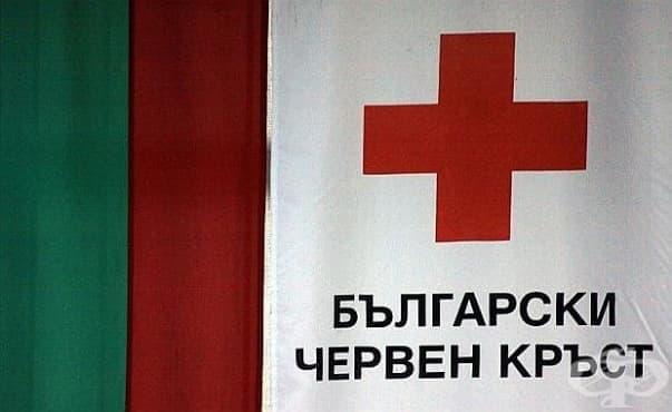 Деца, пострадали при катастрофи, ще получат финансова помощ от БЧК - изображение