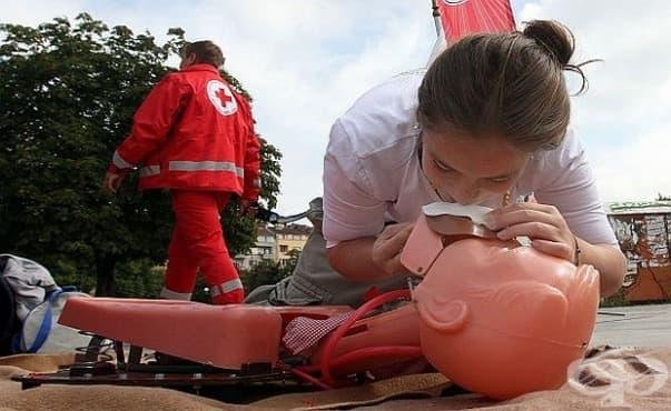 Назначиха на работа първите младежи парамедици в Разград - изображение