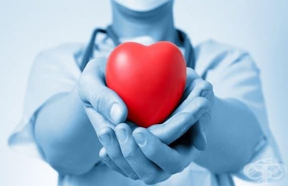Стартира седмицата на донорството - изображение