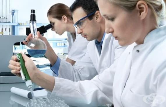 Амебите помагат на бактериите на чумата да оцелеят между епидемиите - изображение