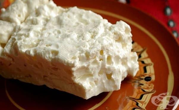 Учени откриха нов вид лактобацилус в златоградско домашно сирене - изображение