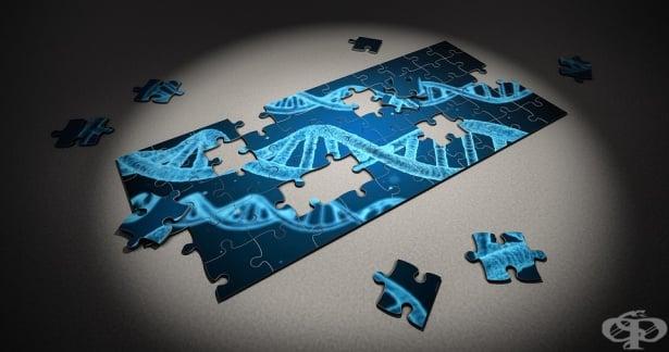 Руски учени откриха алтернативен начин за диагностициране на наследствени заболявания - изображение
