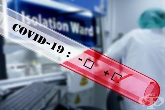 COVID-19 – диагноза, присъда, изпитание... - изображение