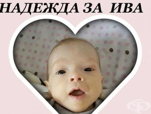 Цяло Банско се обедини за лечението на 5-месечно бебе - изображение