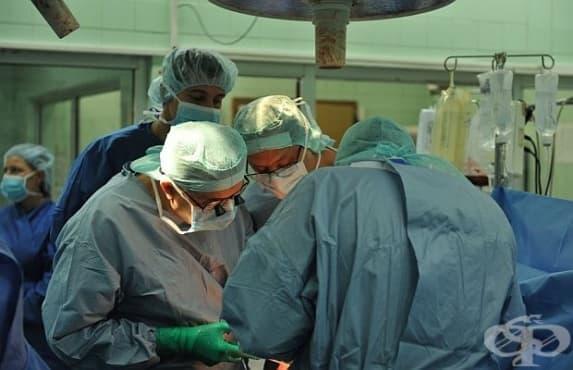 Пета чернодробна трансплантация във ВМА за тази година - изображение