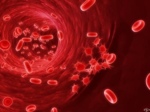 Национална конференция по трансфузионна хематология - изображение