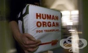 Новият директор на Изпълнителната агенция по трансплантации започва работни посещения в донорските бази - изображение