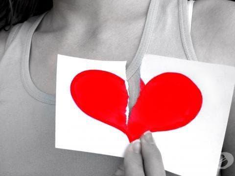 Никола Владов: Българинът се страхува да не му изтъргуват дарените органи - изображение