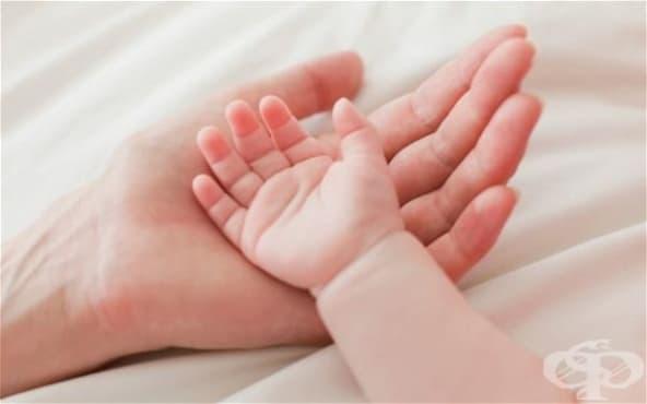 Всяка година в България се правят над 100 000 аборта - изображение