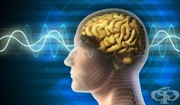 Алцхаймер може да се открие още в детска възраст - изображение